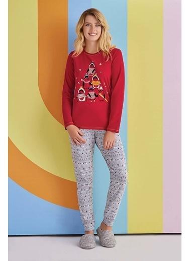 Roly Poly Rolypoly Penguins Kadın Pijama Takımı Açık Gri Kırmızı